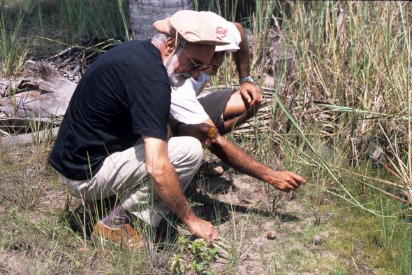 Onde a cobra trocou de pele (Minas Gerais), fotografia de Daniela Moreau