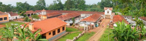 expression locale qui signifie brousse dense, forêt tropicale de São Tomé.