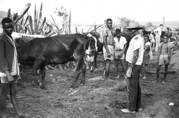 Azorian colonial settlement, Catofe (Cuanza Sul, Angola) 1960