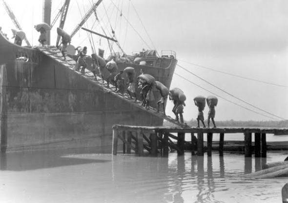 Porto de Bissau, peanut shipment, 1947
