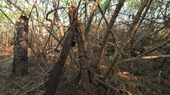 Base Tchissombo (MPLA) velhas armas da guerrilha