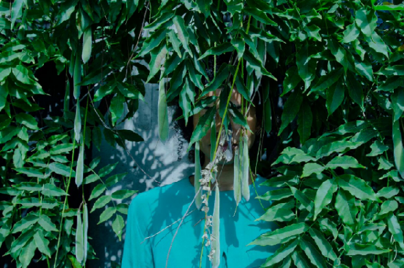 Zohra Opoku Ficus Carica, 2015 Impressão em têxtil, cortesia de Mariane Ibrahim Gallery