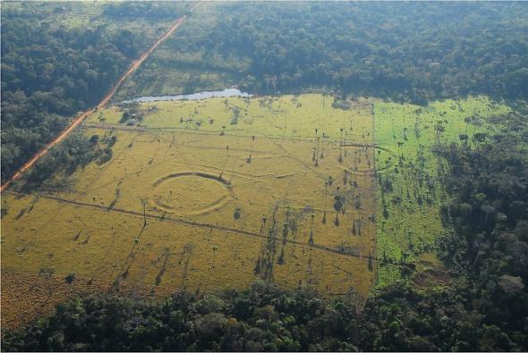 Geoglifos com 1000 e 2000 anos foram descobertos na região amazónica do Pará (Brasil) desde dos anos de 1970, como resultado do aumento da desflorestação.