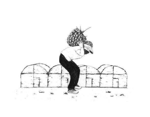 ilustração de Laura Marques