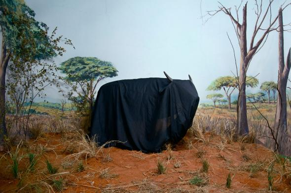 In the Days of a Dark Safari #8, Kiluanji Kia Henda, inkjet print on cotton paper, 93cmx140cm, 2017