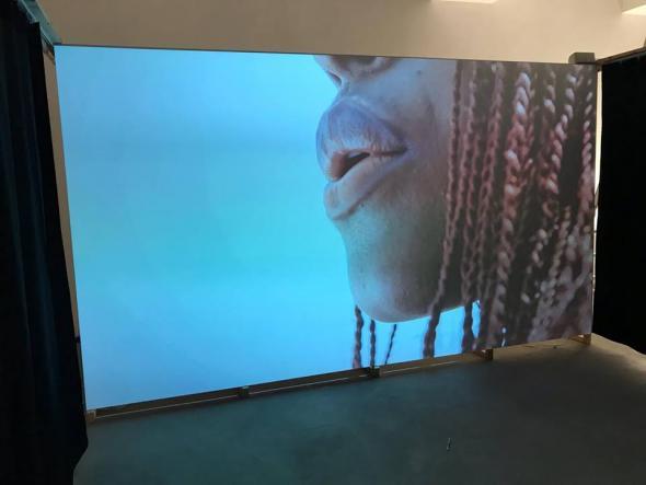 Beauty (2018) instalação de vídeo, Hd, som 7', Sound by soundlikenuno (Chullage)
