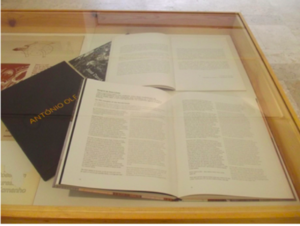 Fig 3 Catálogos de António Ole e José David com ensaios de Ruy Duarte de Carvalho.