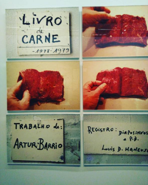 Livro de Carne (1977-78), de Artur Barrio.