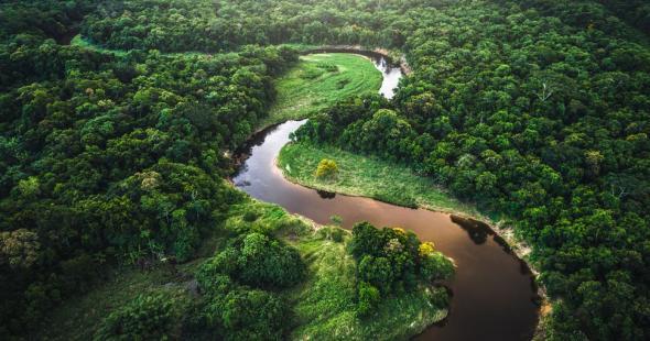 Os rios da Amazónia, no Caminho da Anaconda. Fonte - El Campesino