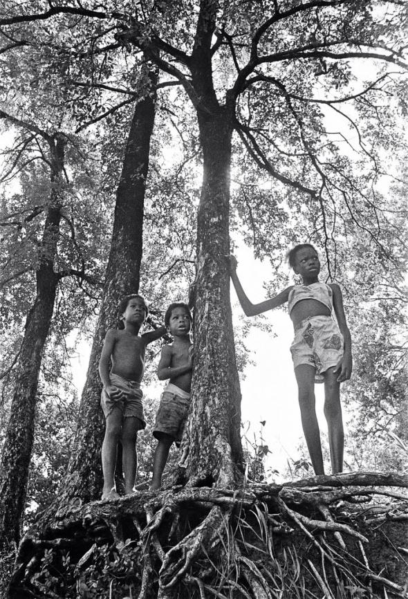 Roots (1997) Earlie Hudnall Jr.