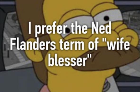 Ned Flanders, The Simpsons - Os Simpsons, série de TV criada por Matt Groening