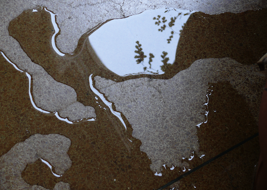 António Ole, Wet Triptych, 2013, photography in light boxes, detail