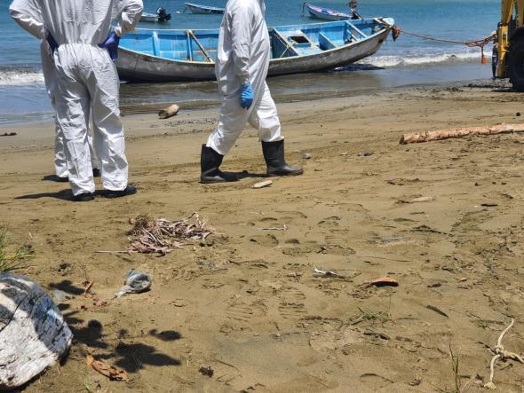 Um pescador do sul de Tobago alertou as autoridades para o barco-fantasma (TEMA)