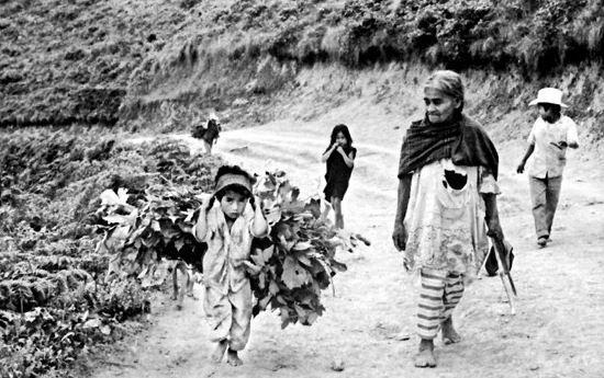 Durante muitos anos, a curandeira vendeu mercadoria nas aldeias à volta de Huautla