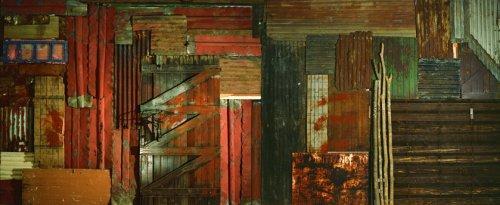 'Na Margem da Zona Limite', Johannesburg Biennale, 1995