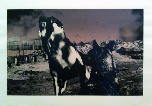 Nadir, Jo Ractliffe, 1987.