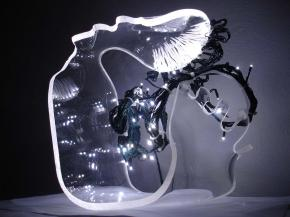 Joël Mpah Dooh Dessins, Plexiglass, ferro