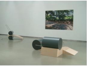vista da exposição, Carlos Cardoso - directo ao assunto, de Ângela Ferreira na Galeria Filomena Soares.