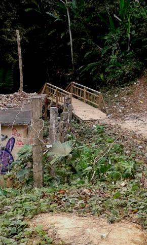 Arelis Sarret - A entrada da selva do Darién