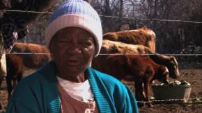 Girtrudes, matriarca e cantadeira dos mascogos (Girtrudes Blues)
