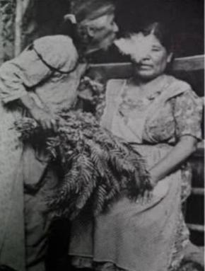 O ritual de sanação através dos cogumelos alucinógenos é uma tradição antiga dos povos pré-hispâncios do México