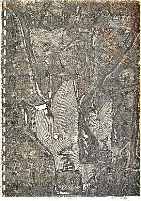 Mito Elias, 1994