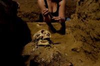 A meditação do cadáver - pré-publicação Miguel Gullander