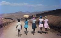 Visões de África politicamente correctas