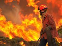 Incêndios florestais, causas e consequências