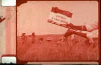 Meteorizações: uma leitura da Agronomia da Libertação de Amílcar Cabral
