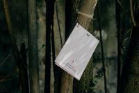 'Partituras para ir', de Joana Braga