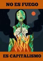 Há mais de 20 dias que a Amazónia arde e o cheiro de morte é o de todxs nós