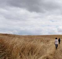 Os conflitos ambientais e as artes numa rede de Terra Batida