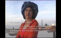 Espécies de espaços. Lugares, não-lugares e espaços identitários na obra videográfica de Ângela Ferreira.