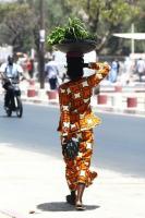 Senegal: quem paga suas dívidas empobrece